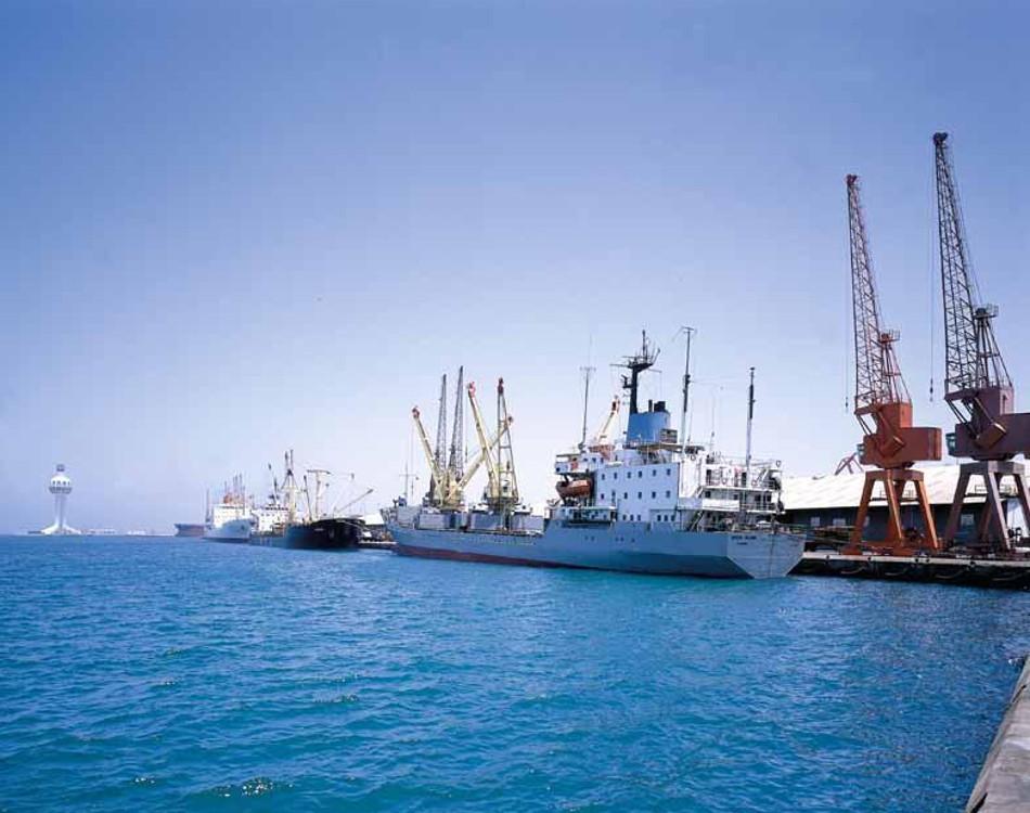 Opportunity Analysis of Red Sea Foundation, Saudi Arabia